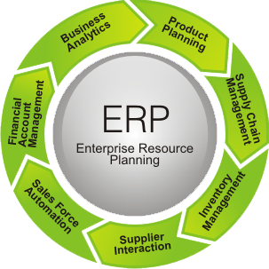 ERP-The Business Automation Process